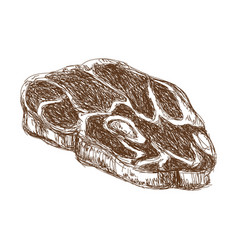 T-bone steak beef fillet fresh grilled engraved vector