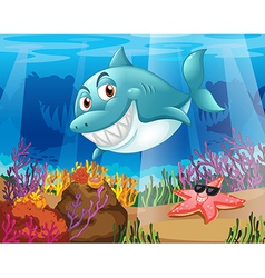 A shark and a starfish under the water vector image