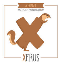 alphabet letter x and xerus vector image