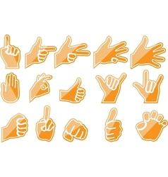 Hand orange vector