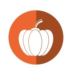 Pumpkin harvest bittersweet vegetable icon orange vector