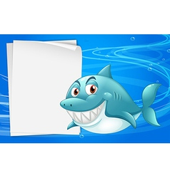 A shark with an empty bondpaper under the sea vector image
