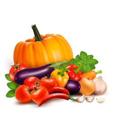 Fresh vegetables healthy food vector