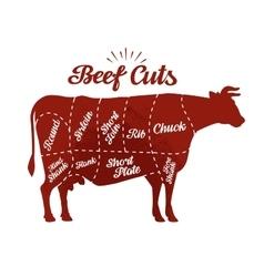 Butcher shop beef cuts vector