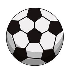 soccer ball sport image vector image
