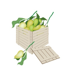 Sweet mango fruits in wooden cargo box vector