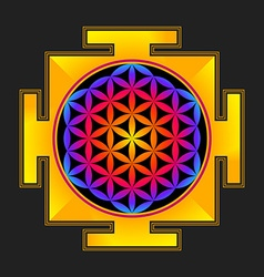 Colored flower of life yantra vector