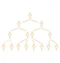 organization chart vector image vector image