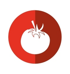 Tomato juicy vegetable icon red circle vector