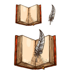 open book with empty page and feather pen sketch vector image