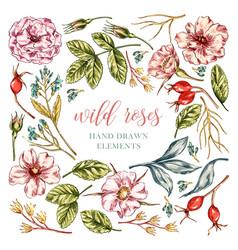 Wild rose flowers elements vector