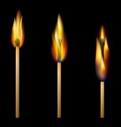 Burning matches on black background vector image