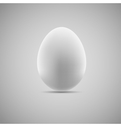 Egg Realistic vector image vector image