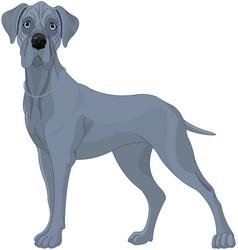 Great danes dog vector