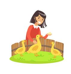 Cute little girl feeding ducks with grain in a vector