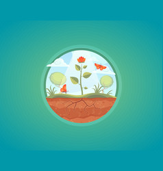 Growing plant flower growth vector