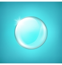 Transparent glass sphere with glares and highlight vector image