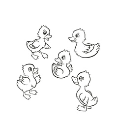 Five little cute ducklings swim on the lake and st vector image vector image