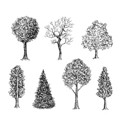 Set of ink hand drawn black and white trees vector