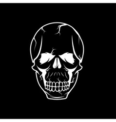 skull design template vector image vector image