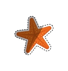 Star sea creature vector