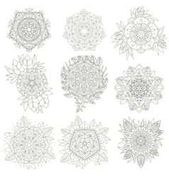 Flowers anti-stress vector