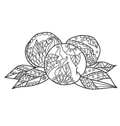 Coloring pages for adultshand drawn sketch style vector
