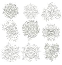 Flowers anti-stress vector