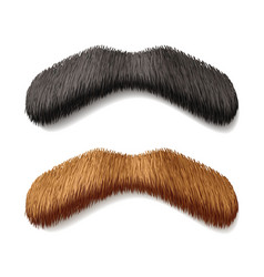 fake mustaches vector image