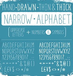 Narrow alphabet vector