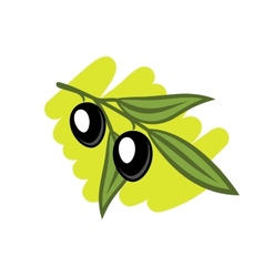 Leafy twig with two black olives vector
