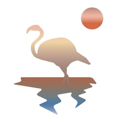 multicolor of flamingos vector image