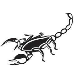 Scorpion Pandinus imperator vector image