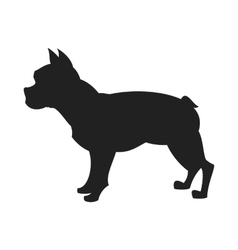 bulldog black silhouette vector image