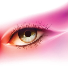 Realistic human eye vector