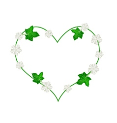 White flower and leaves in beautiful heart shape vector