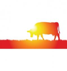 cow meadow vector image vector image