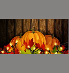 the of pumpkins isolated vector image vector image