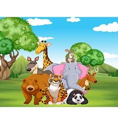 Wild animals on the field vector image