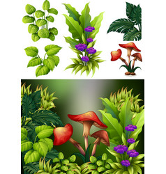 Background scene with mushroom and flowers vector