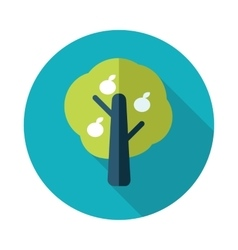 Fruit tree flat icon with long shadow vector