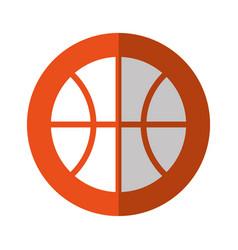 basket ball isolated vector image