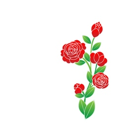 Flower on white background vector image