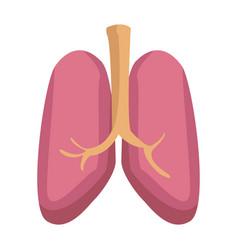 Lungs icon human internal organ medical vector