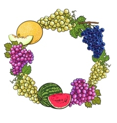Round frame of white green purple grapes melon vector