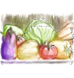 Autumn vegetables vector