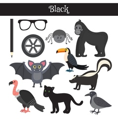 Black learn the color education set of primary vector