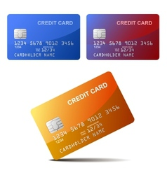 Realistic Credit Card vector image