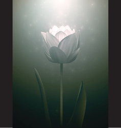 Realistic flower vector image vector image