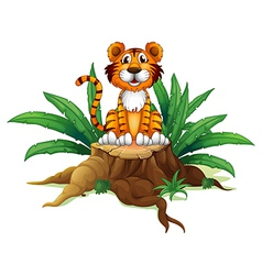 A tiger sitting above a tree vector